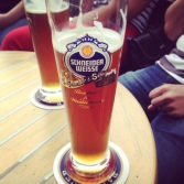 Schneider's beer (S2 cells users will understand !)